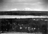 Mt. Sanford (16,000 ft) & Mt. Drum (12,000 ft), always on horizon, Dry Creek, Alaska.