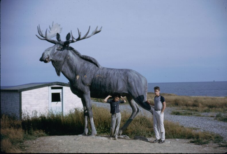 Nova Scotia. Joe and Charlie with statue of moose. August 1963.